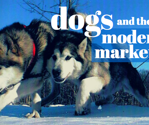 7 Traits Of The Modern Marketer – And A Dog!